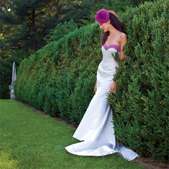 Vyberte si šaty pro nejkrásnější den vašeho života! / Svatební ...